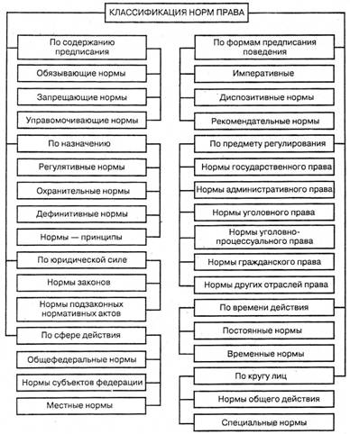 Схема строения головного мозга человека структура