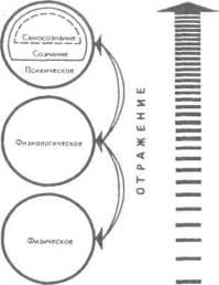 Уровни и формы психического отражения