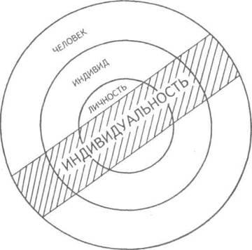 Соотношение объемов понятий «