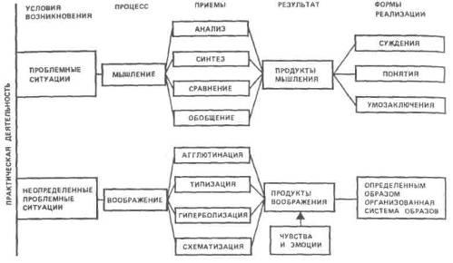 электрическая схема человека