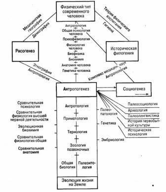 Маклаков А. Общая психология