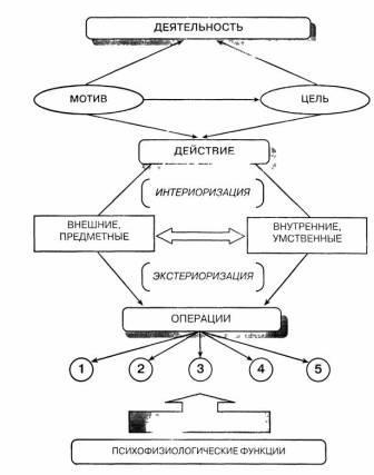 Структурная схема деятельности