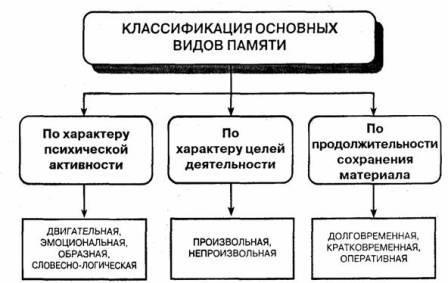 Психология память схема