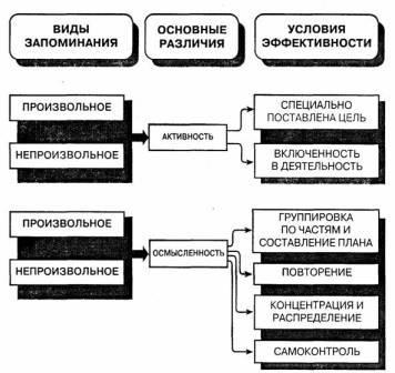 Основные процессы и механизмы памяти.  Запоминание.