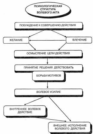 схема структура волевого