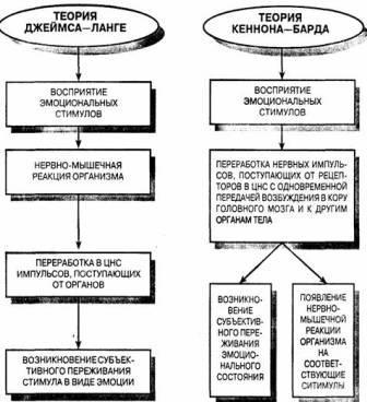 Основные положения в теориях