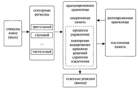Модель памяти Р. Аткинсона и