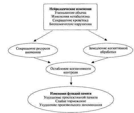 Основы психологии познания