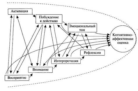 Величковский Б. Когнитивная